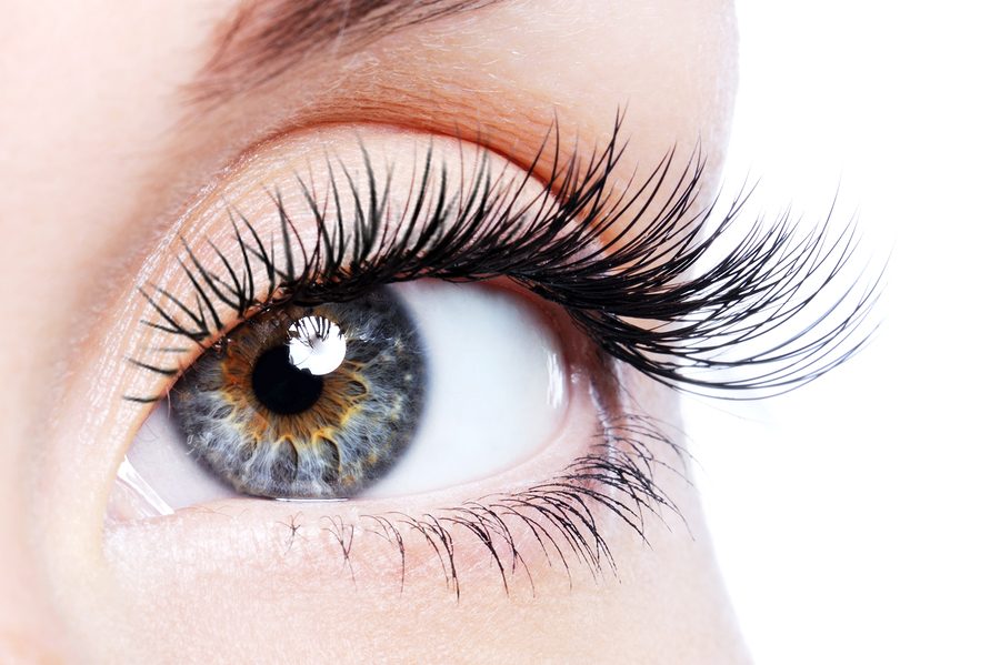 Volume Eyelash Extensions Workshop
