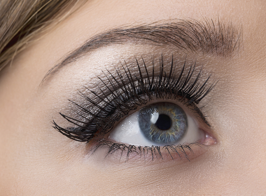 Eyebrow Extensions Beauty Courses